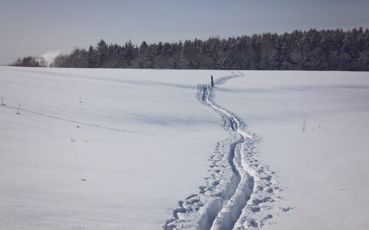 AWAYN IMAGE Jasper/Maligne Lake cross country skiing