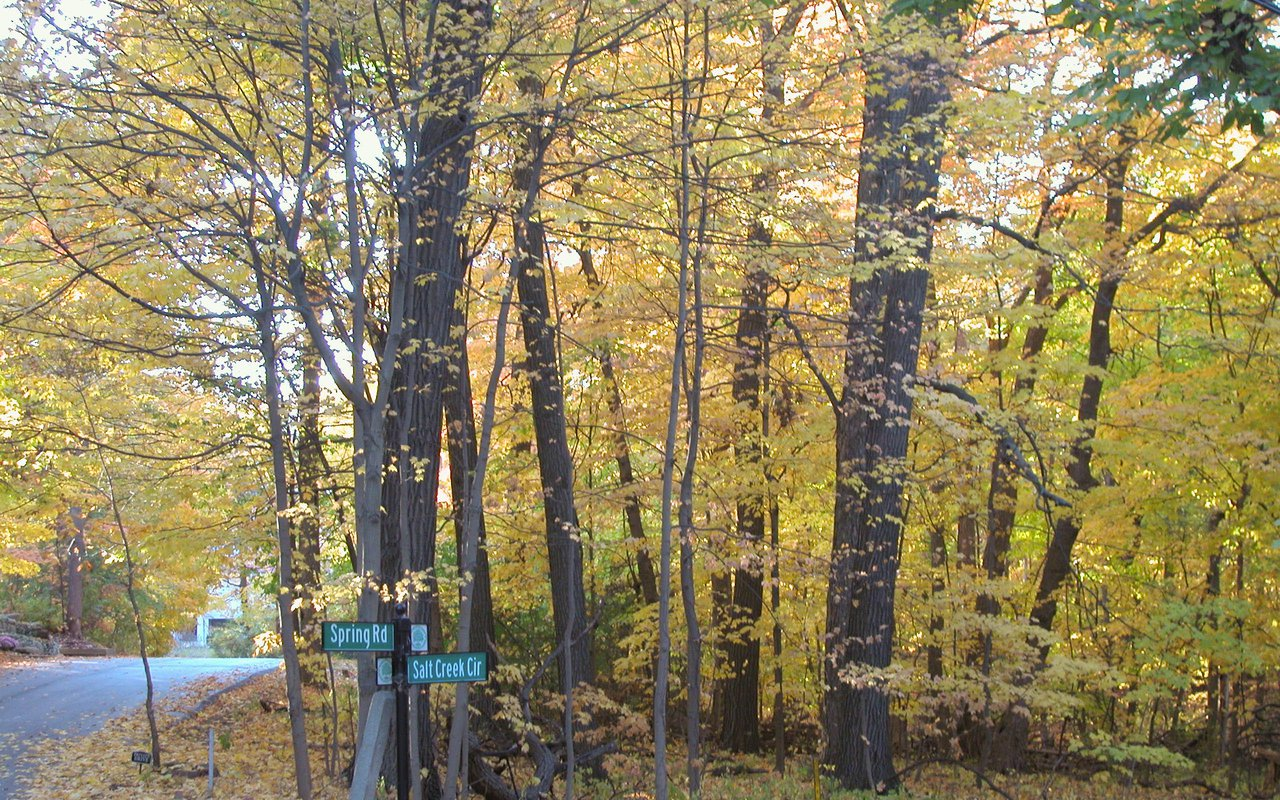 AWAYN IMAGE Explore Fullersburg Woods