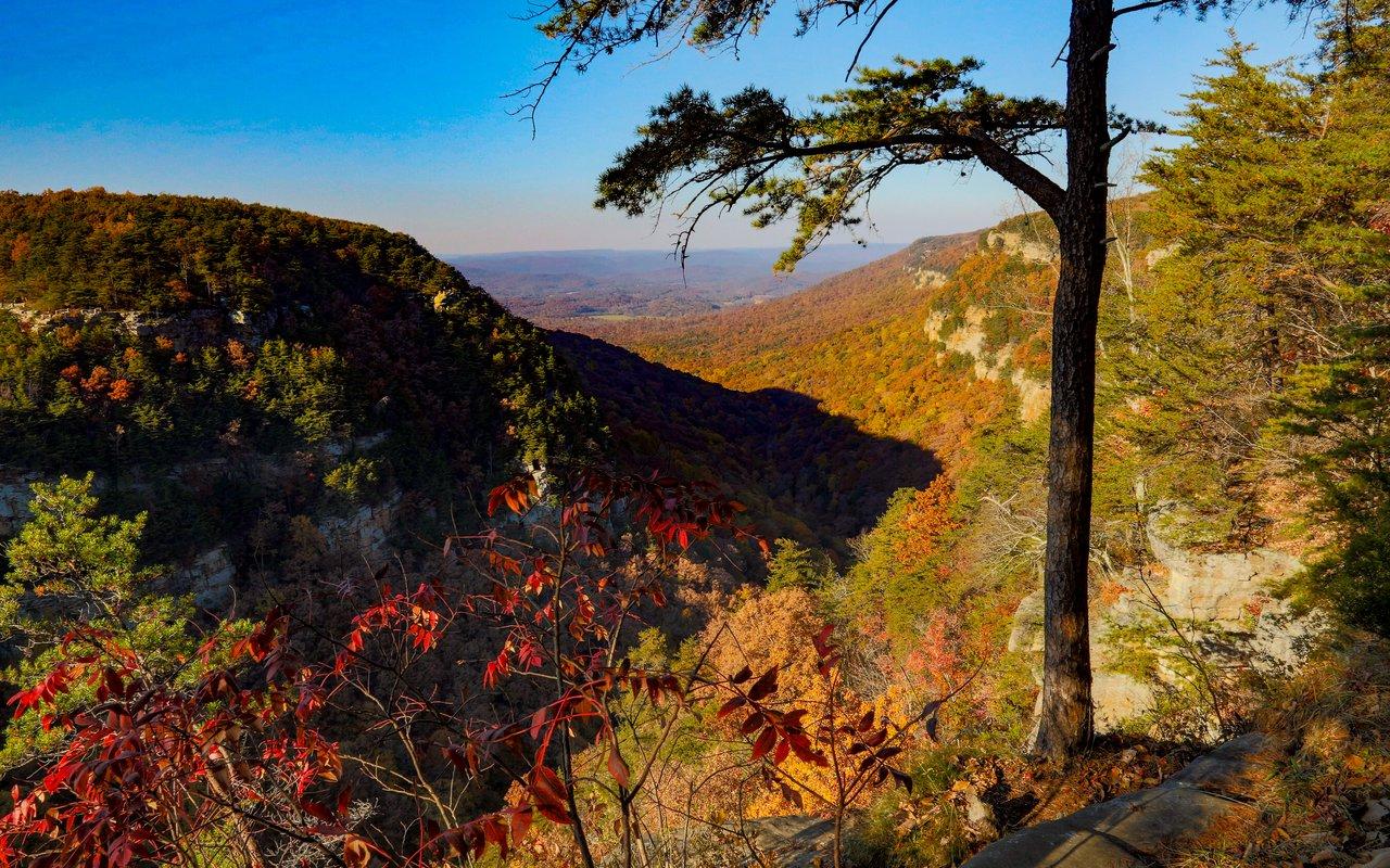 AWAYN IMAGE Explore Lookout Mountain