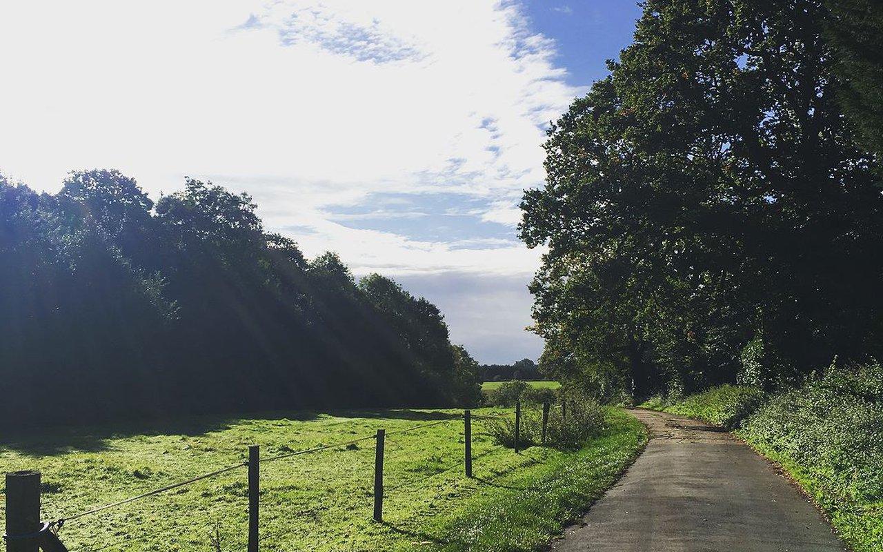 AWAYN IMAGE MTB or Walk to Leith Hill
