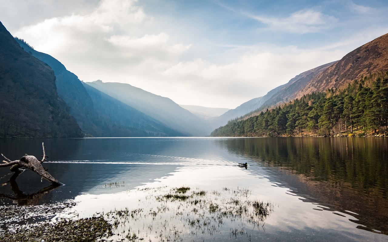AWAYN IMAGE Explore Wicklow National Park