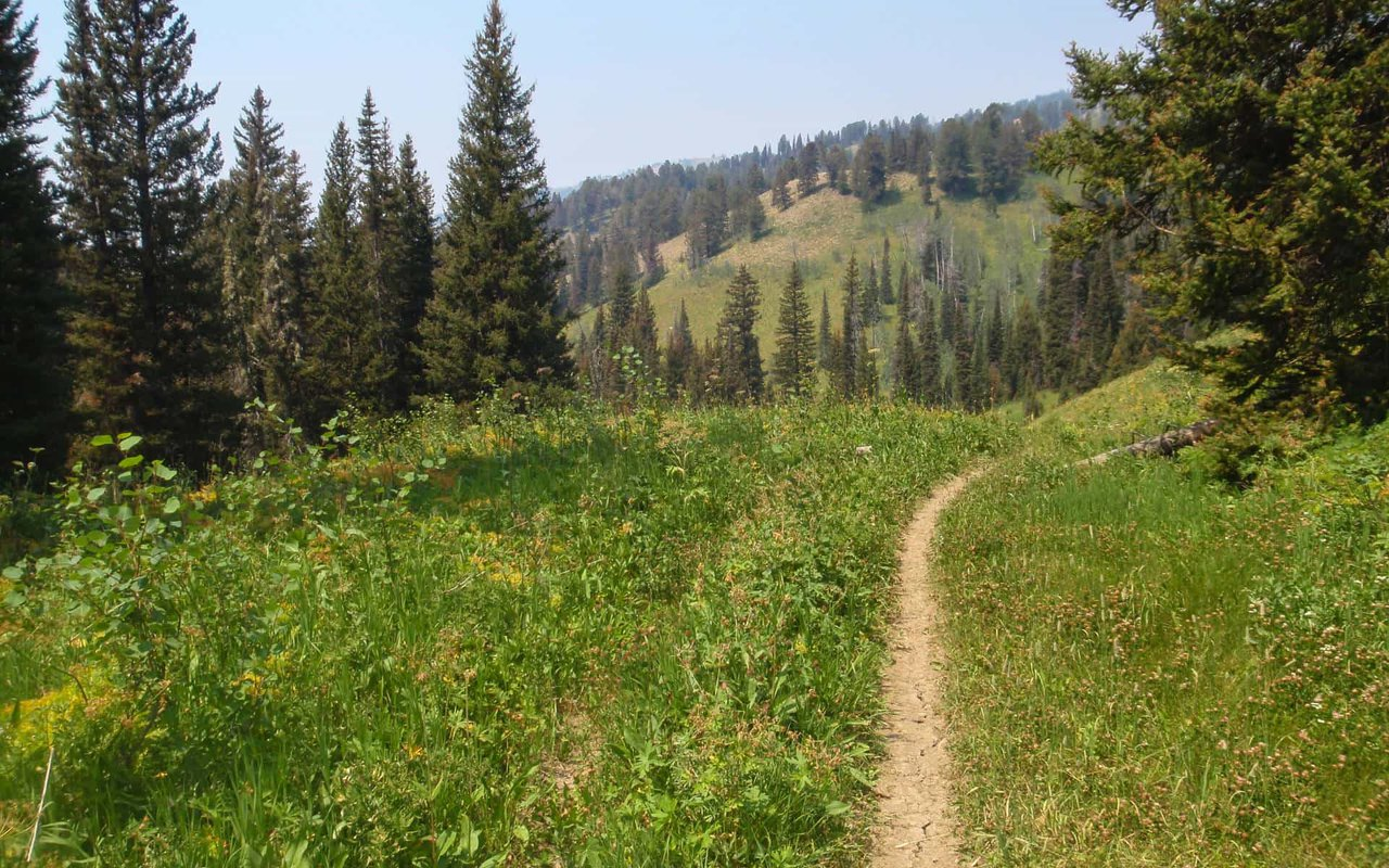 AWAYN IMAGE Mountain Biking in Cache Creek