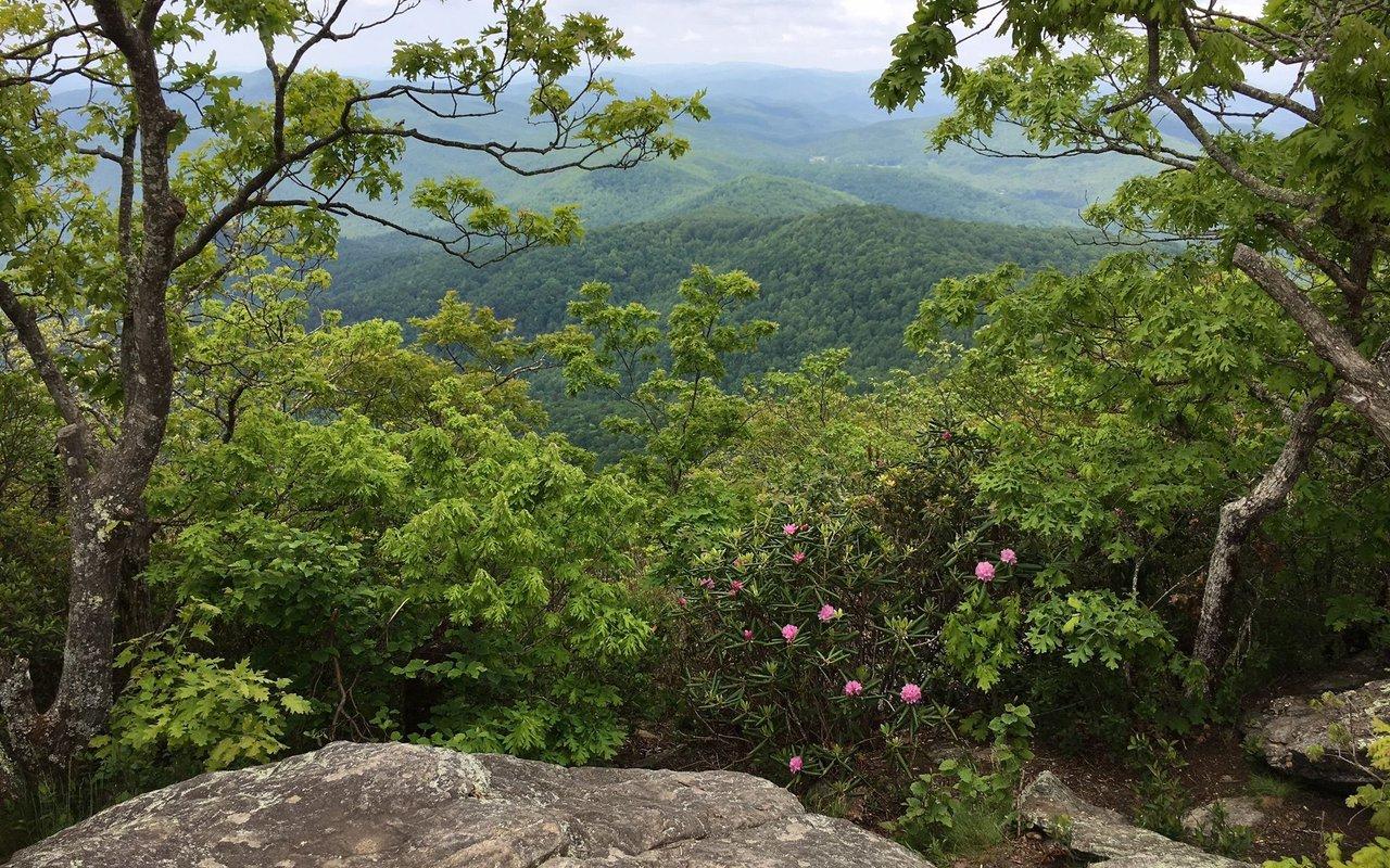 AWAYN IMAGE Freeman trail loop Blairsville, Georgia