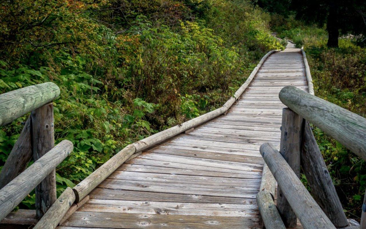 AWAYN IMAGE Gold Creek pond hike