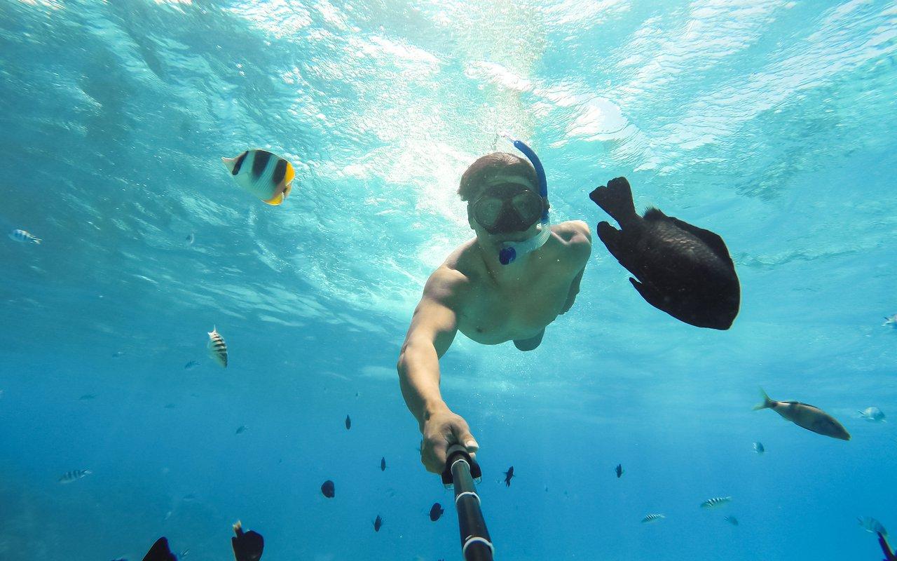AWAYN IMAGE Surfing in Bora Bora