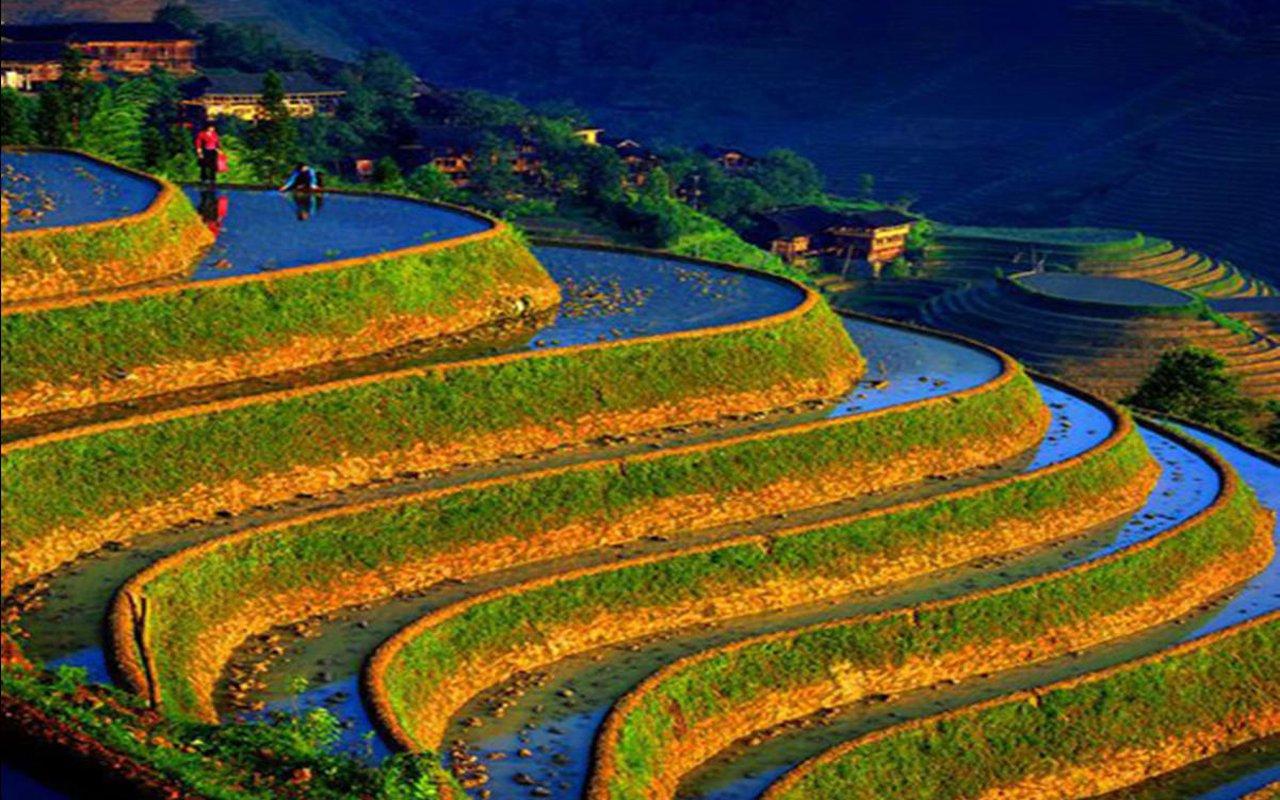 AWAYN IMAGE Visit the Lexiaguo, Yuanyang Rice Terraces