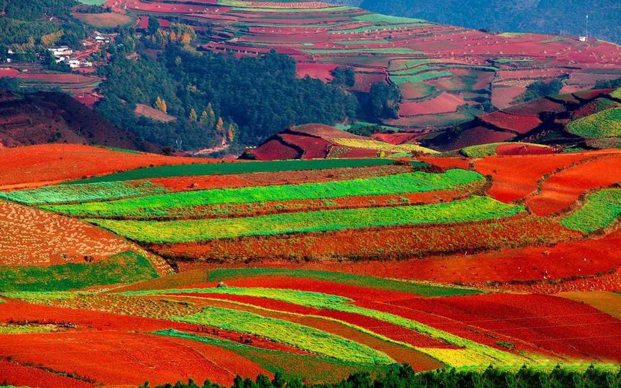 AWAYN IMAGE Visit the Lexiaguo, Yuanyang Rice Terraces