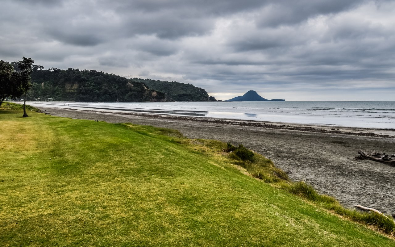 AWAYN IMAGE Beach day with your dog at Ohope Beach