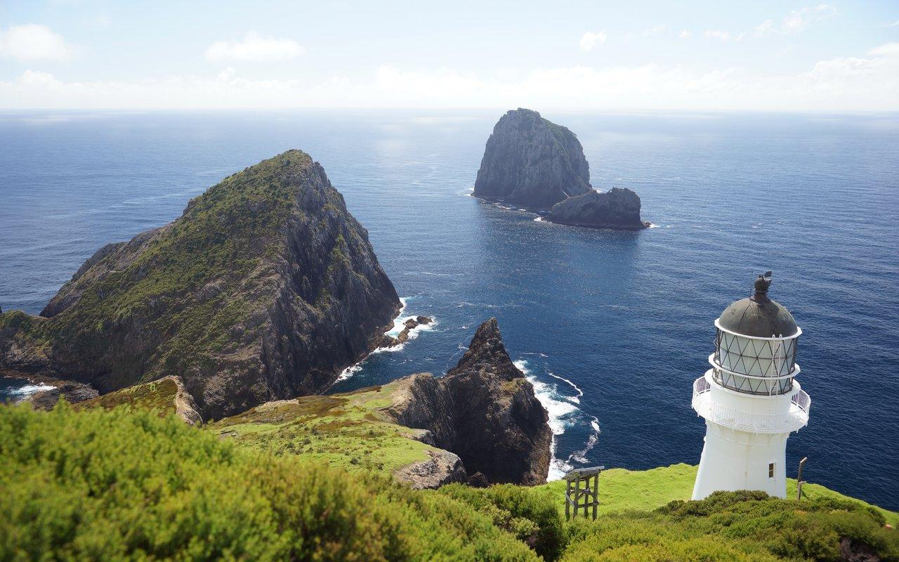 AWAYN IMAGE Spend a day in Cape Brett