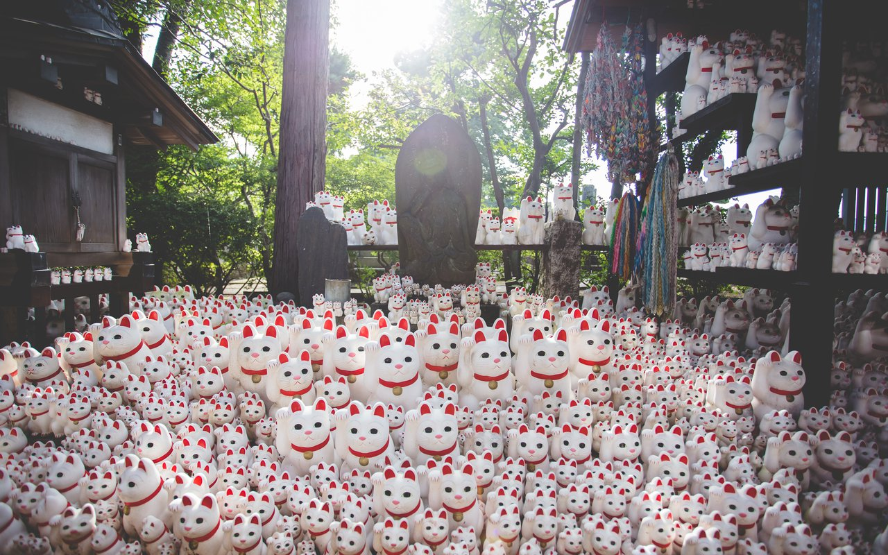 AWAYN IMAGE Visit The Gotokuji Temple