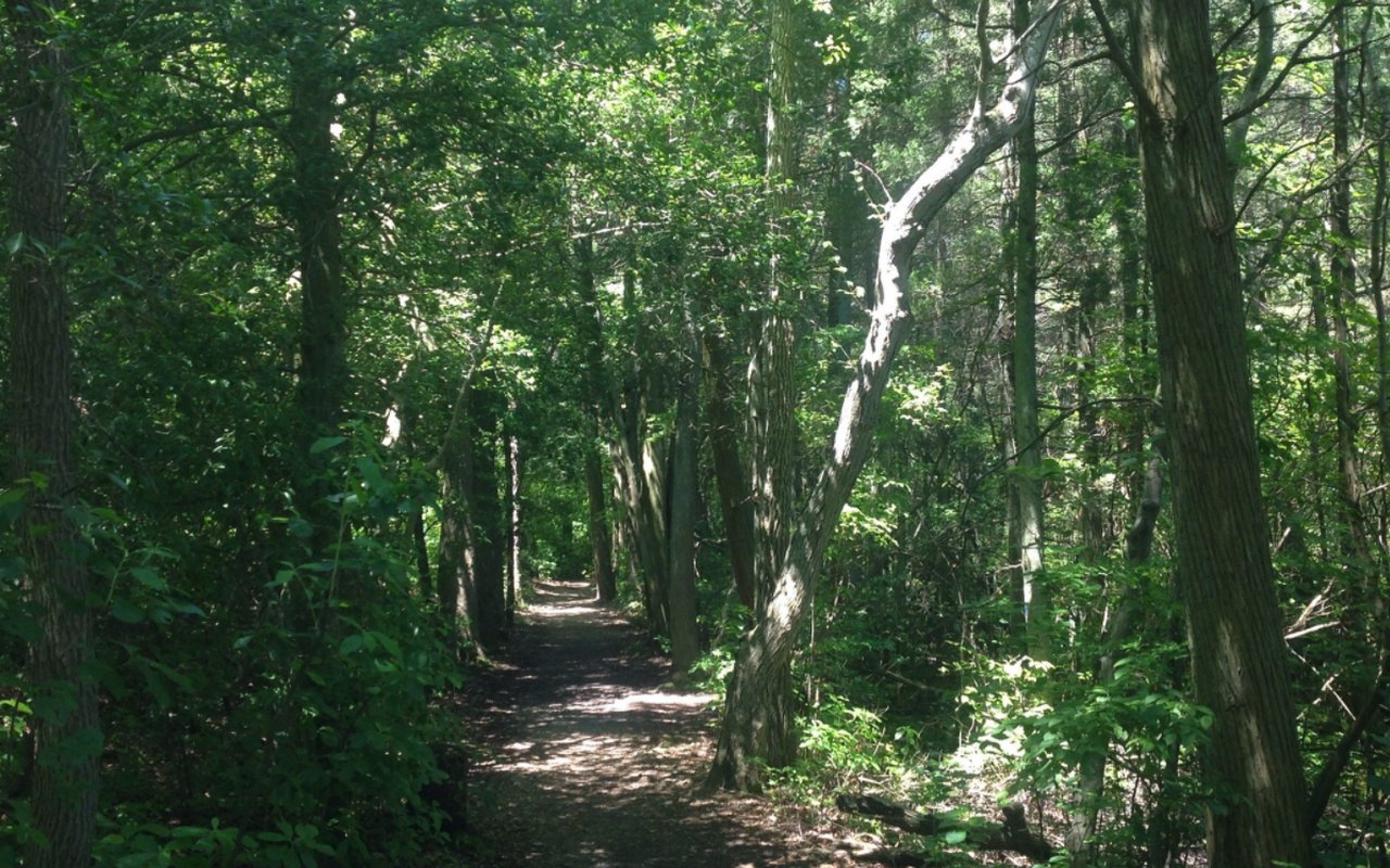 AWAYN IMAGE (Hike) Parvin State Park Campground is a 5.4 mile loop