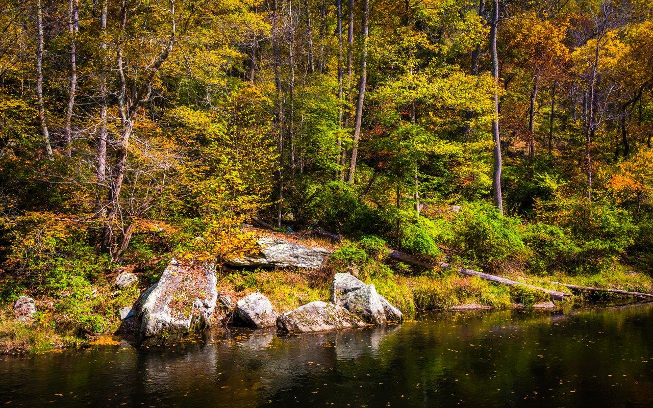 AWAYN IMAGE Gunpowder Falls State Park
