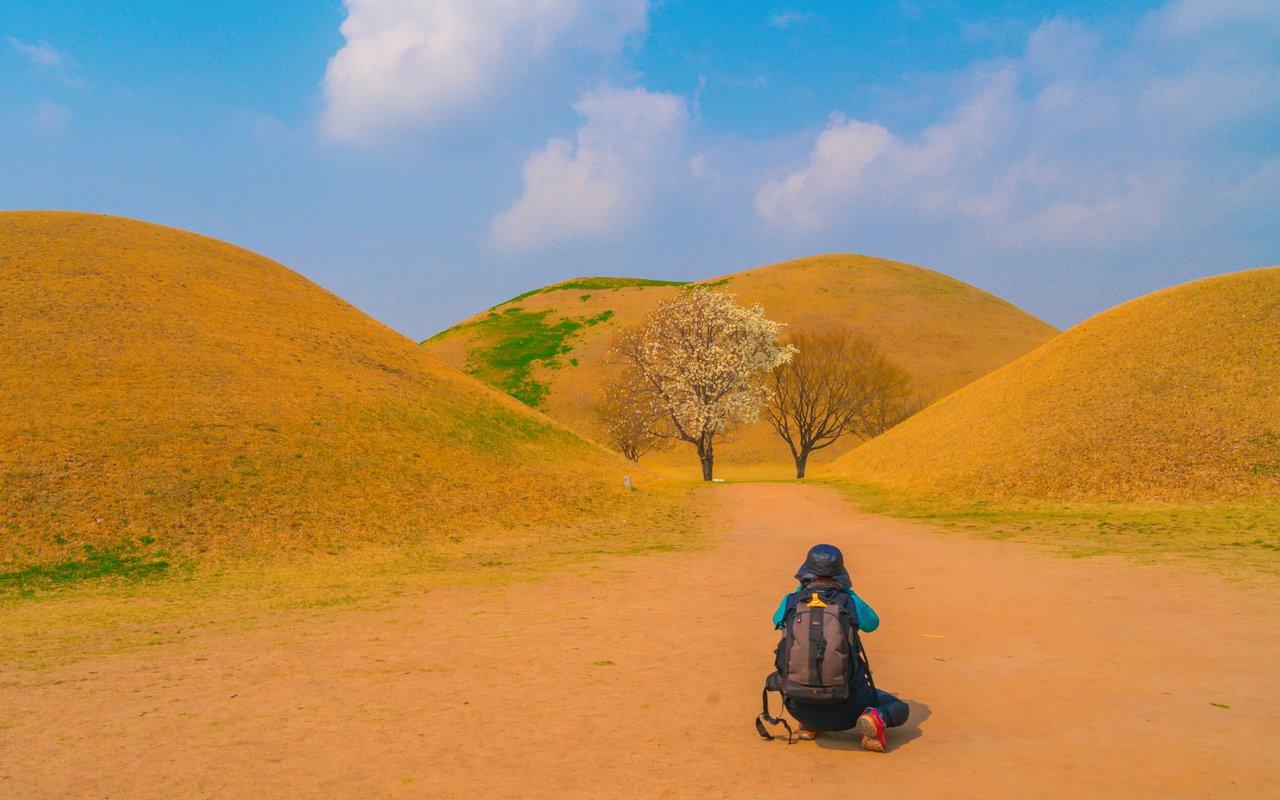 AWAYN IMAGE Royal Tumuli Park - Daereungwon Tomb Complex