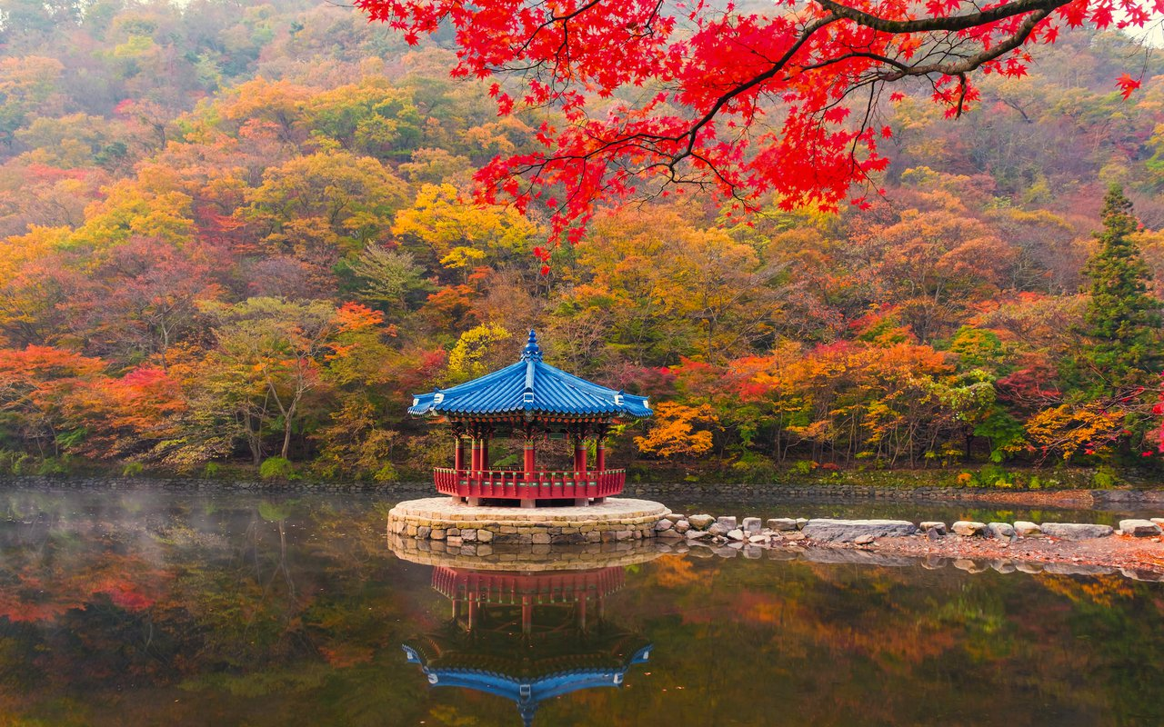 AWAYN IMAGE Enjoy the views of Naejangsan National Park