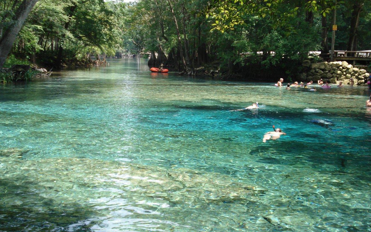AWAYN IMAGE Camping and swimming at Ginnie Springs