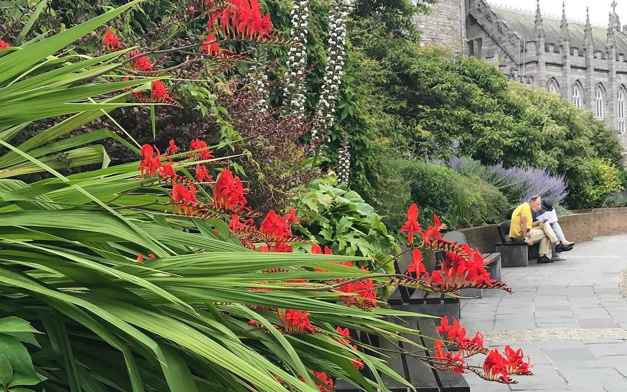 "AWAYN IMAGE Visit ""secret"" Dubh Linn Gardens"
