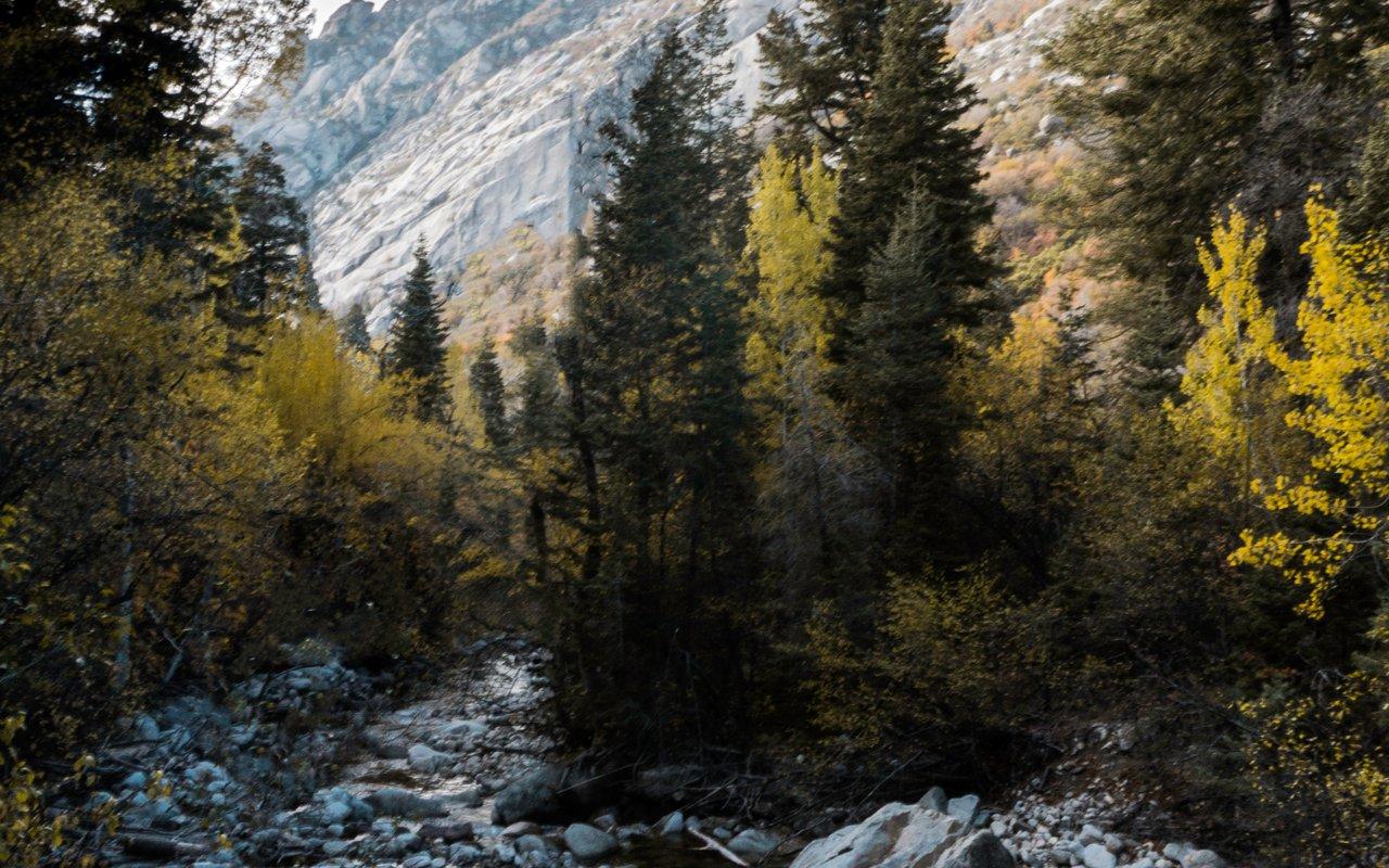 AWAYN IMAGE Little Cottonwood Canyon Hike