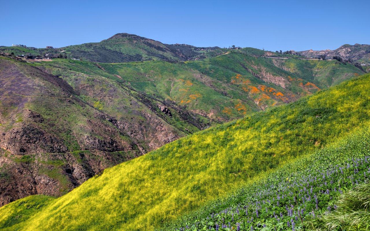 AWAYN IMAGE Check out Malibu's Corral Canyon Trail