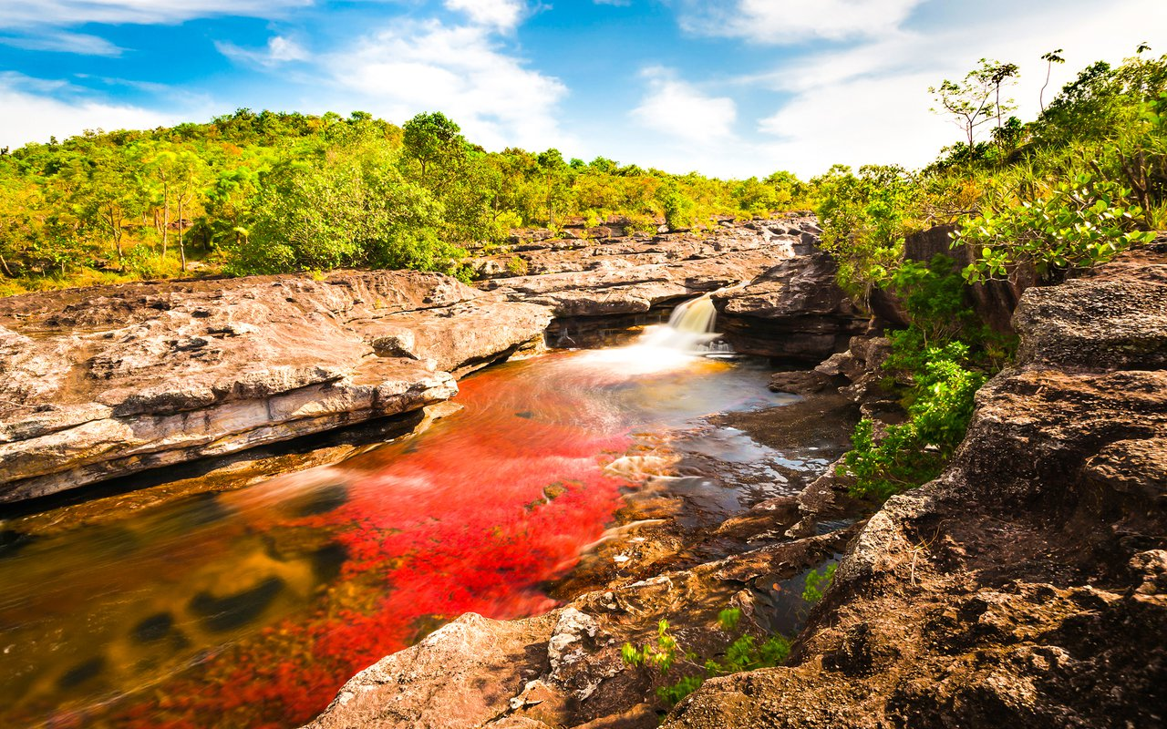 AWAYN IMAGE Visit the magnificent Caño Cristales