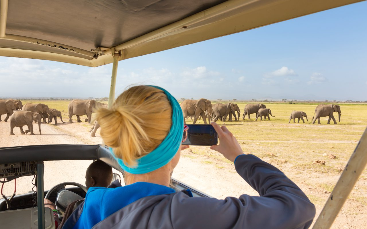 AWAYN IMAGE Experience The wildlife in the Amboseli National Park
