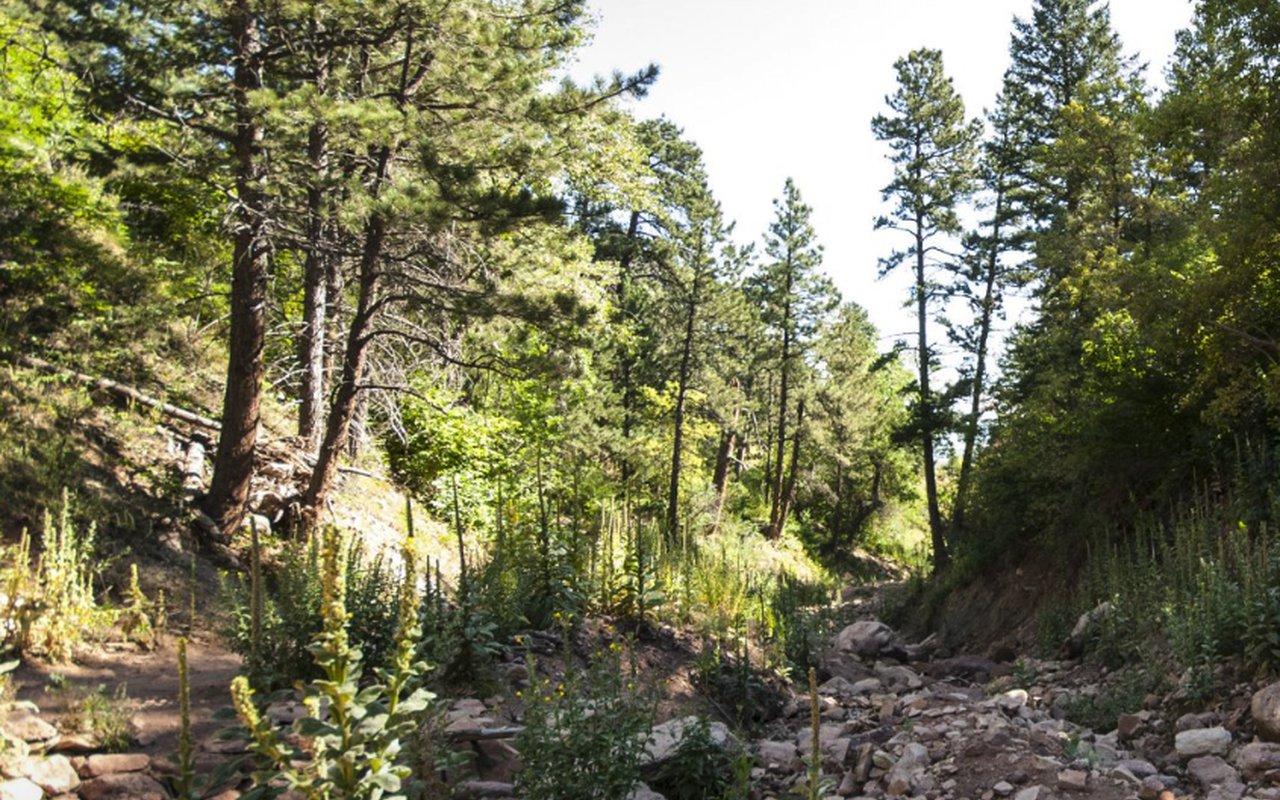 AWAYN IMAGE McClintock Trail Hike