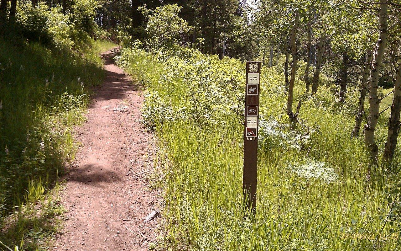 AWAYN IMAGE Waterton Canyon Indian Creek Mountain Bike Trail