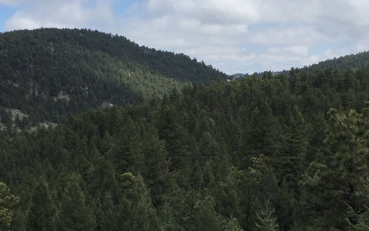 AWAYN IMAGE Bear Creek Lake for a walk
