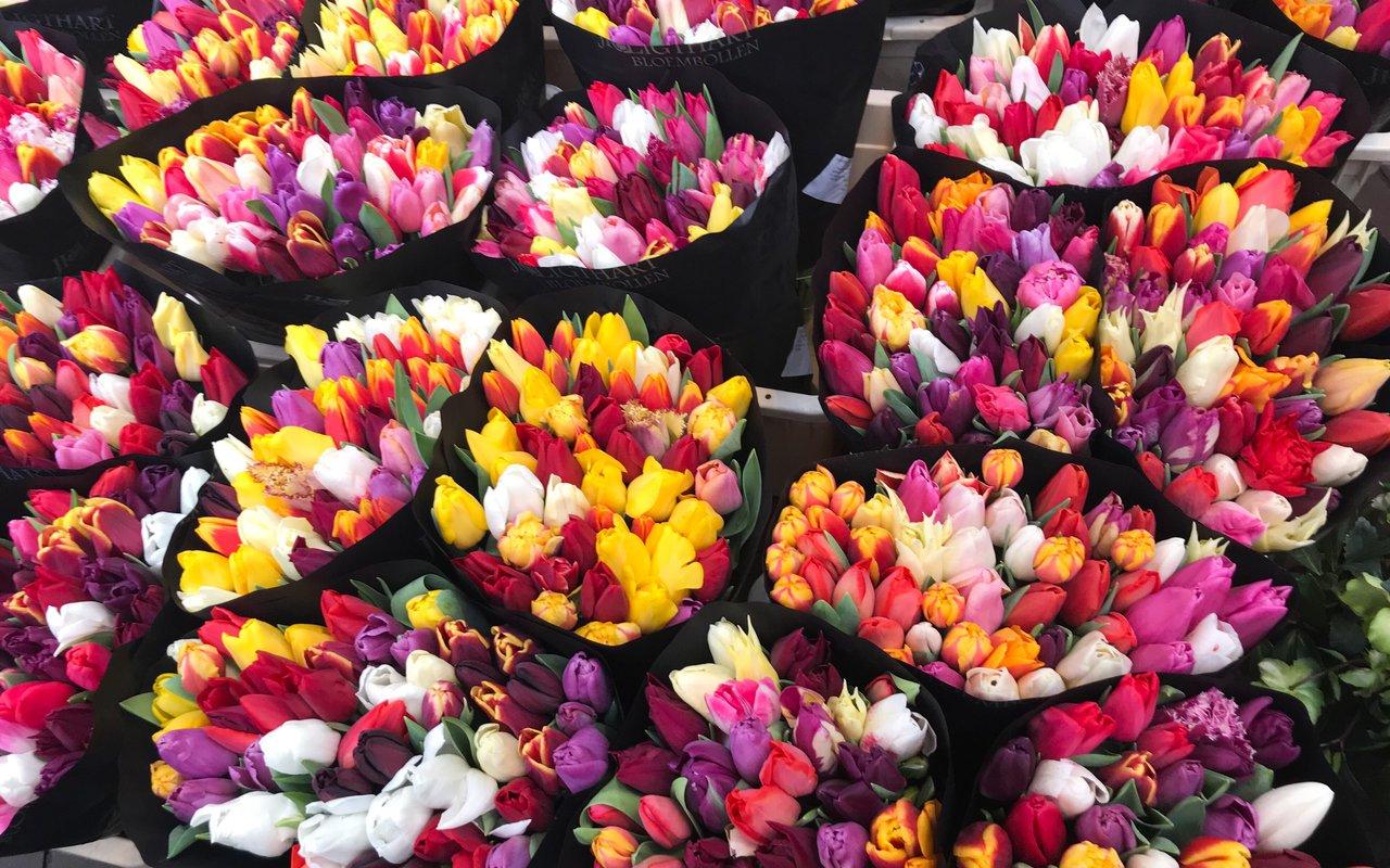 AWAYN IMAGE Shop at  Amsterdam's Flower Market