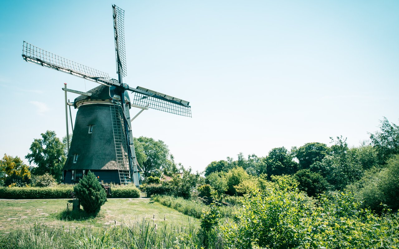 AWAYN IMAGE Picnic at Amstelpark