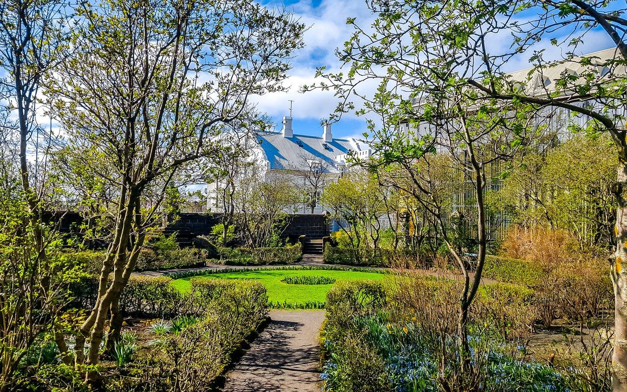 AWAYN IMAGE Walk around the Austurvollur