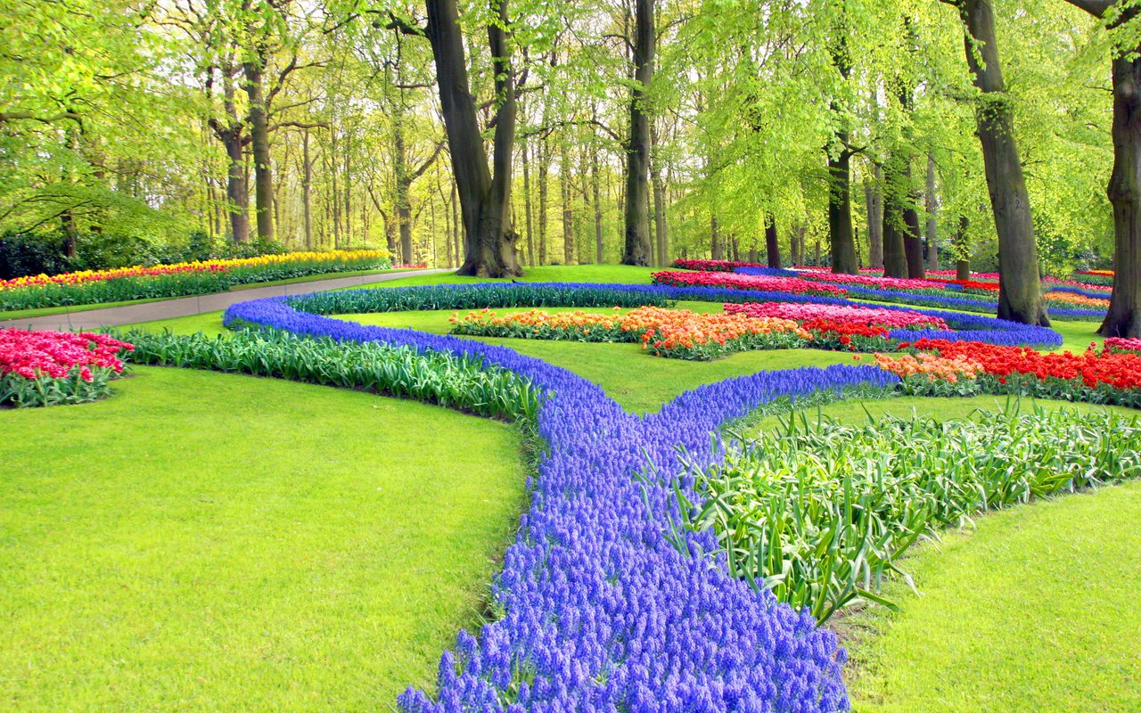 AWAYN IMAGE Spend a day at De Hortus Botanicus