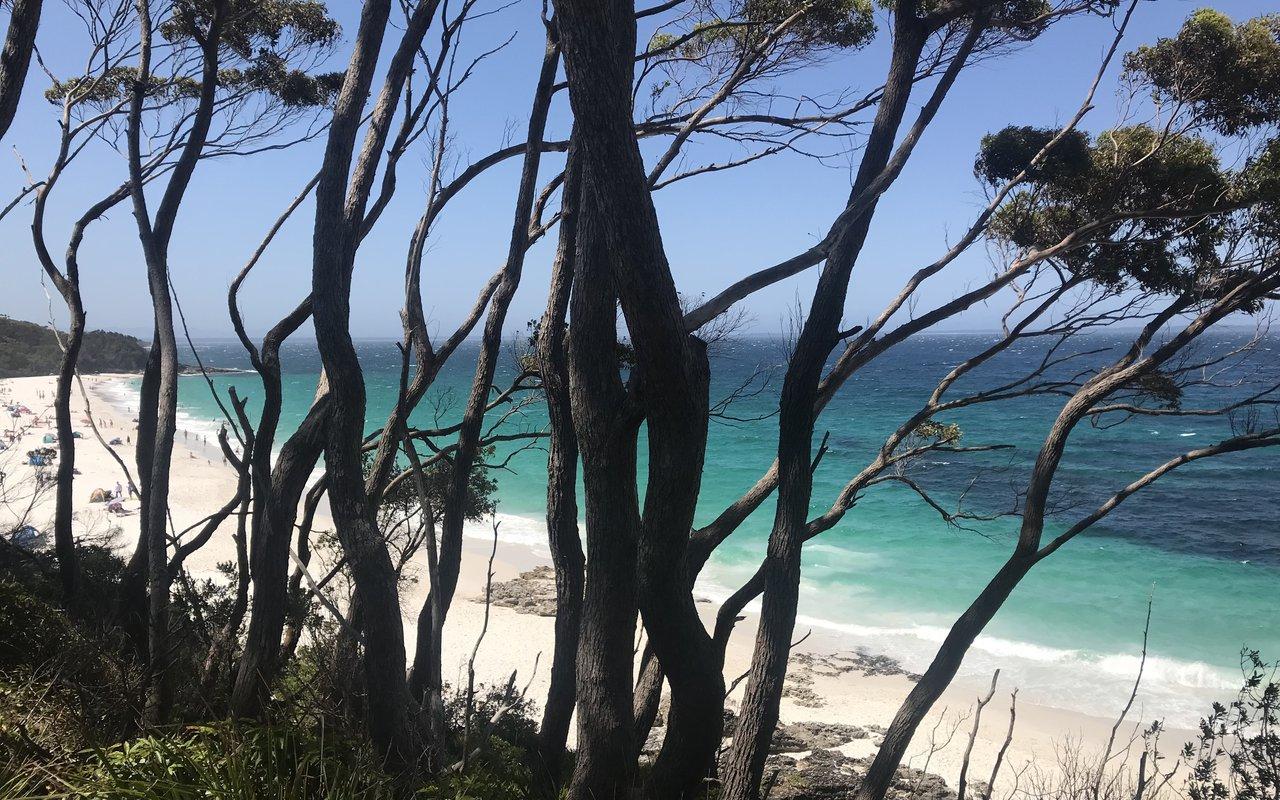 AWAYN IMAGE Visit Hyams Beach