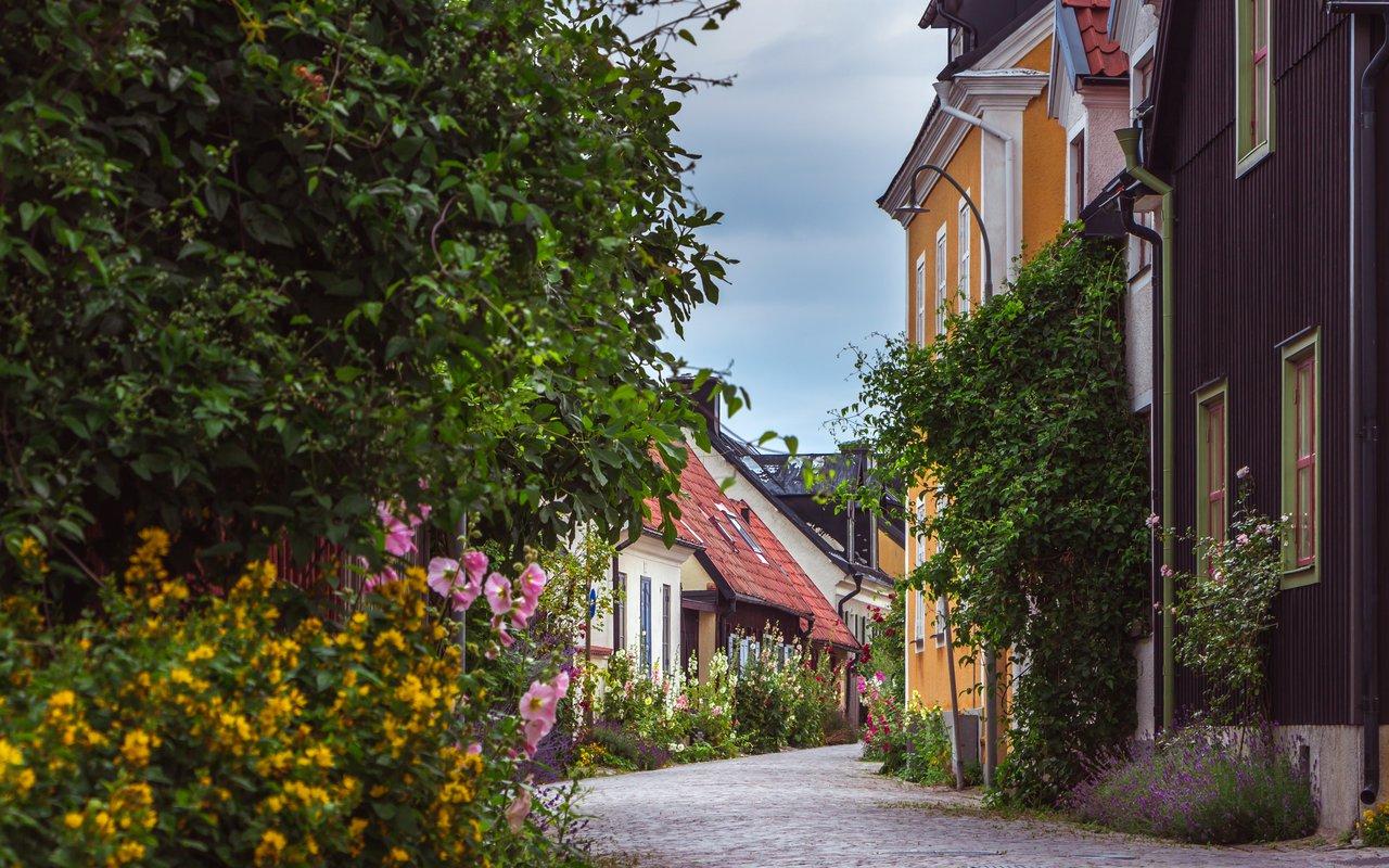 AWAYN IMAGE Walk around Visby, Gotland