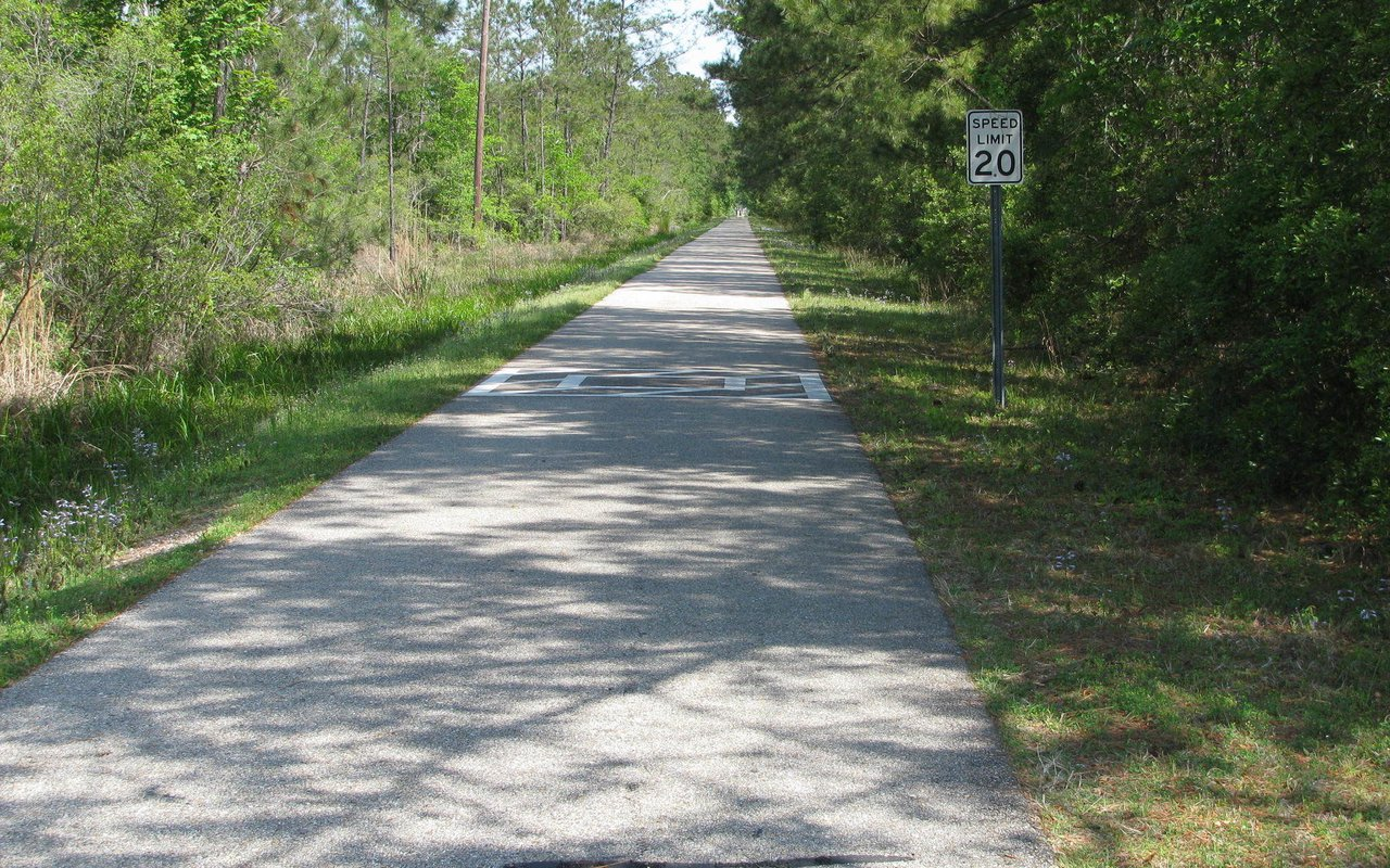 AWAYN IMAGE Tammany Trace Trail