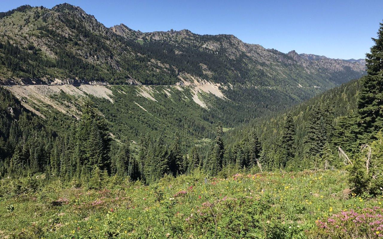 AWAYN IMAGE Naches Peak Loop Trail