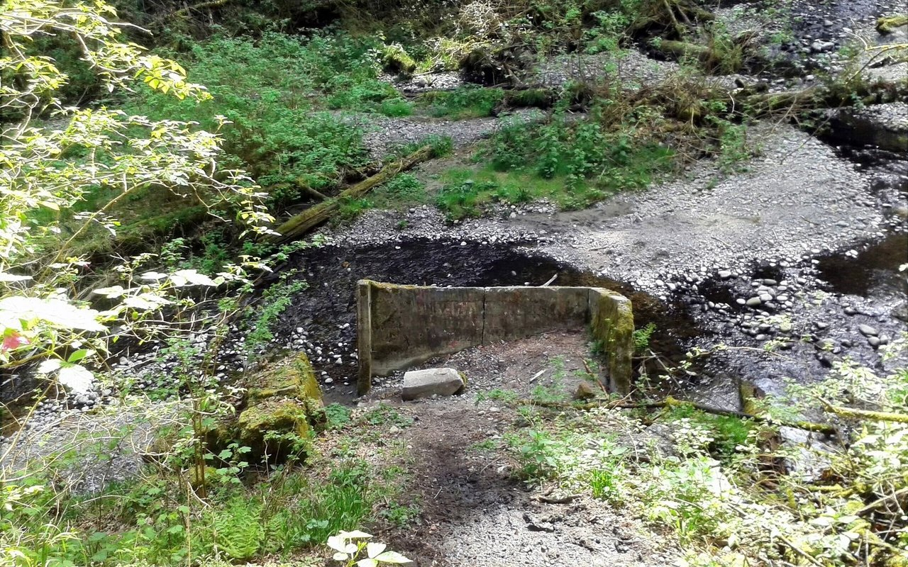 AWAYN IMAGE Swan Creek Trail