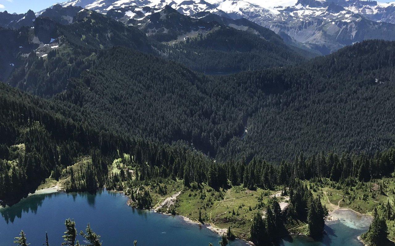 AWAYN IMAGE Tolmie Peak Trail