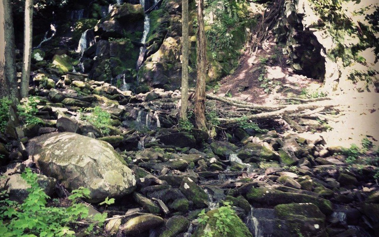 AWAYN IMAGE Lehigh Gorge Trail