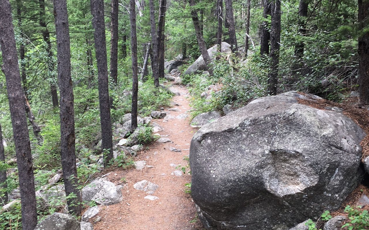 AWAYN IMAGE Woodbine Falls Trail