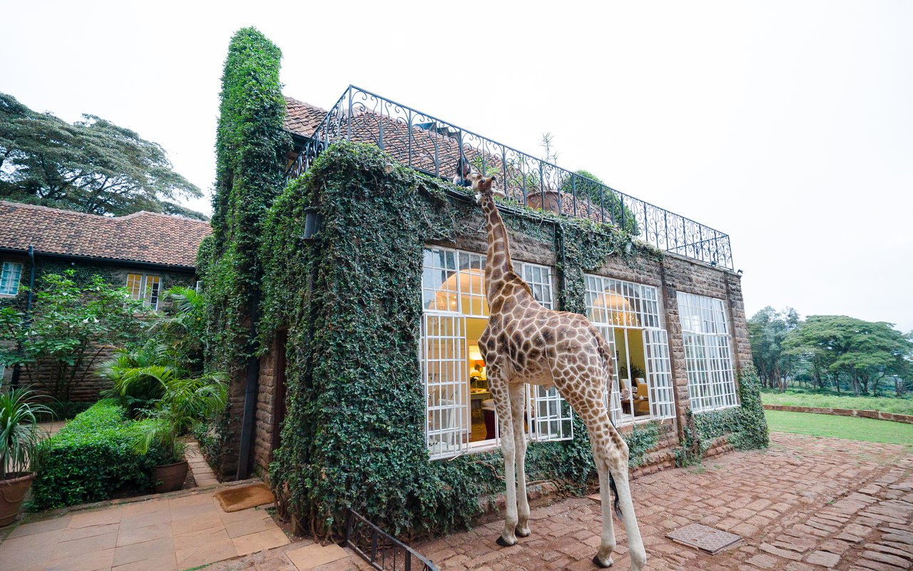 AWAYN IMAGE Stay in Giraffe Manor Hotel