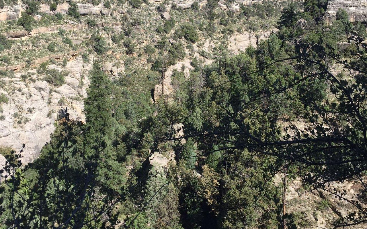 AWAYN IMAGE Walnut Canyon Rim Trail