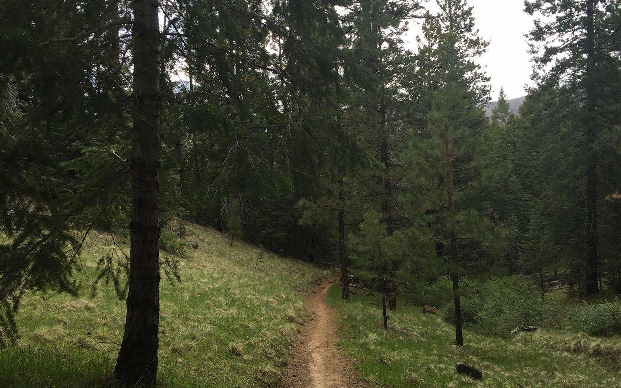 AWAYN IMAGE Sunset Trail to Brookbank Trail Loop