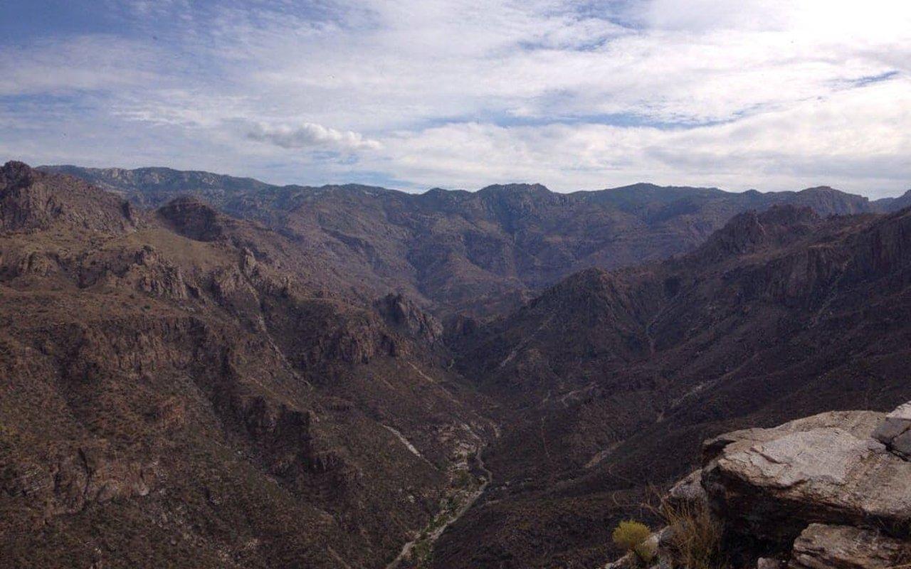 AWAYN IMAGE Blackett's Ridge
