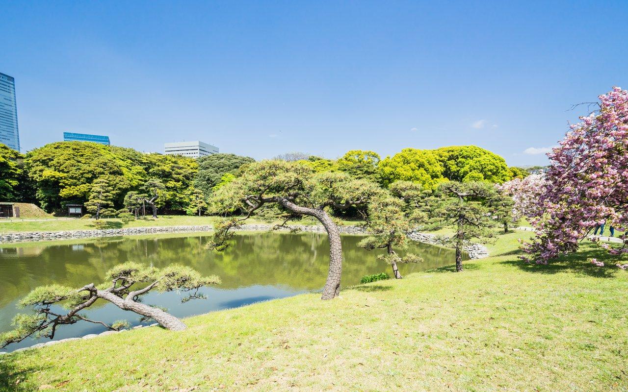 AWAYN IMAGE Explore the Hamarikyu Gardens