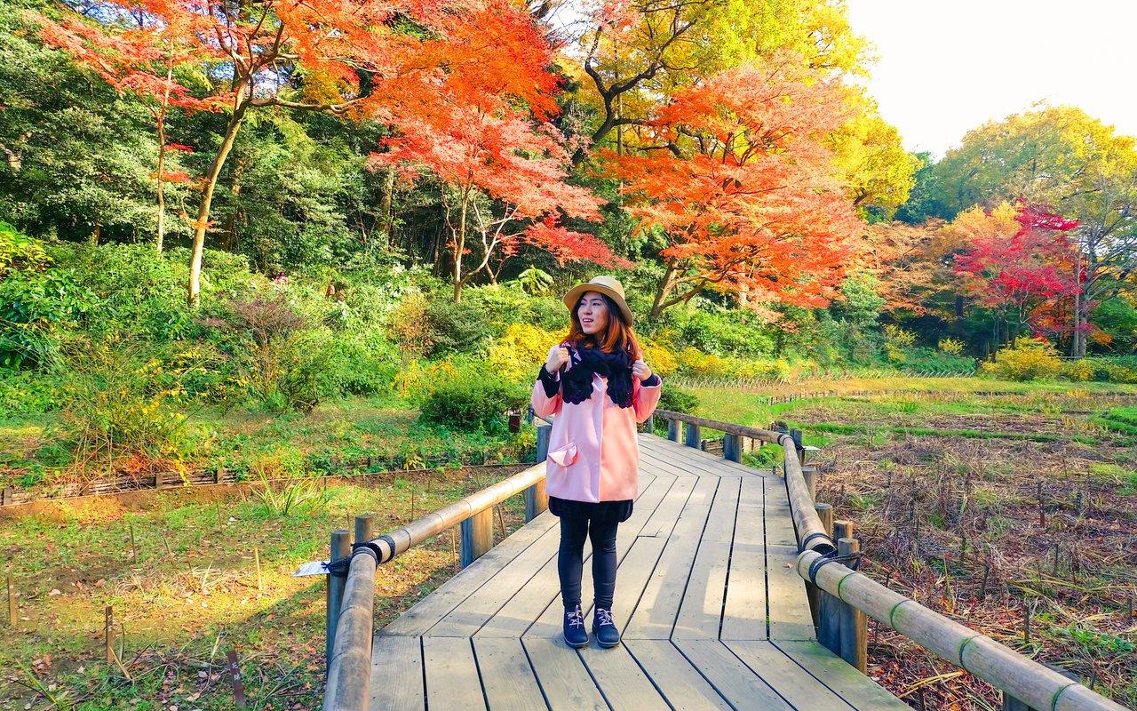AWAYN IMAGE Explore Autumn Yoyogi Park