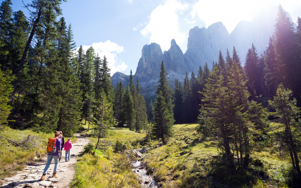 AWAYN IMAGE Selva di Val Gardena Nteur Selva