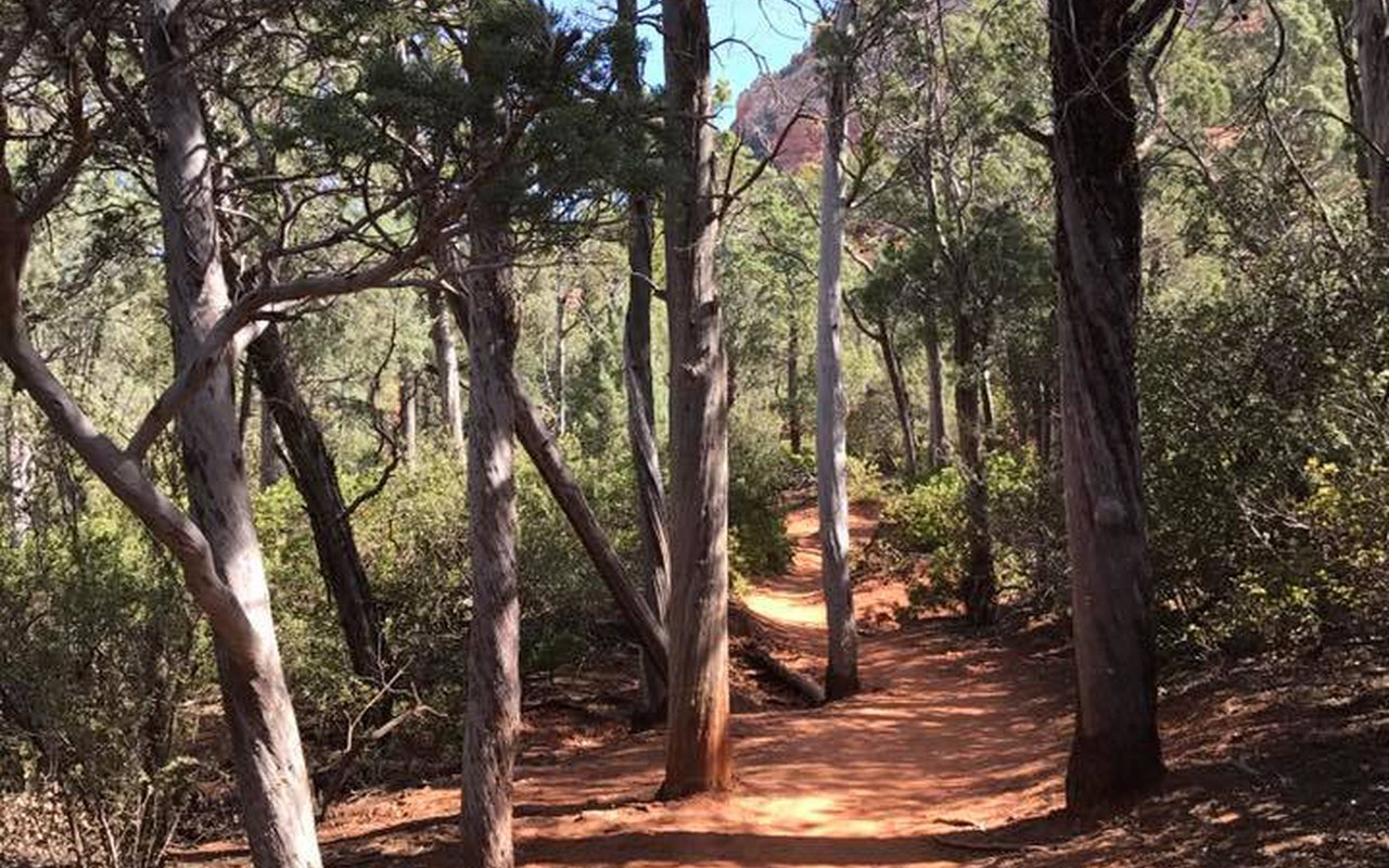 AWAYN IMAGE Hike and camp in Coconino National Forest
