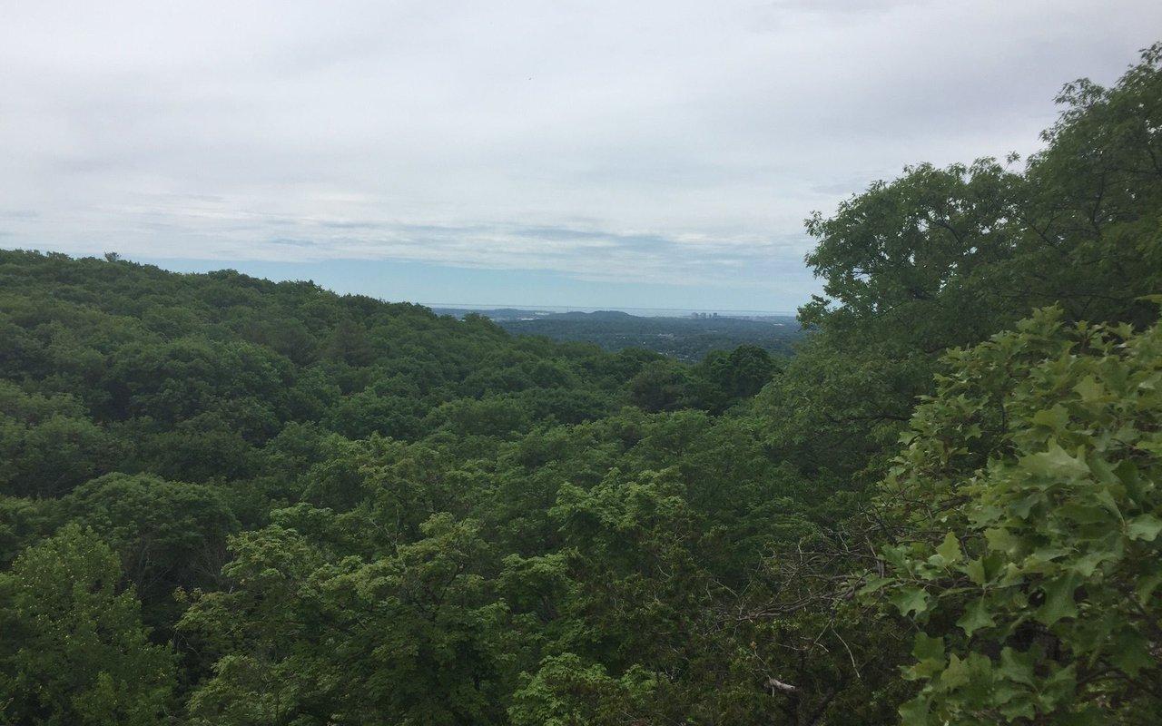 AWAYN IMAGE Hike Tower Trail Blue and Violet Loop at Sleeping Giant