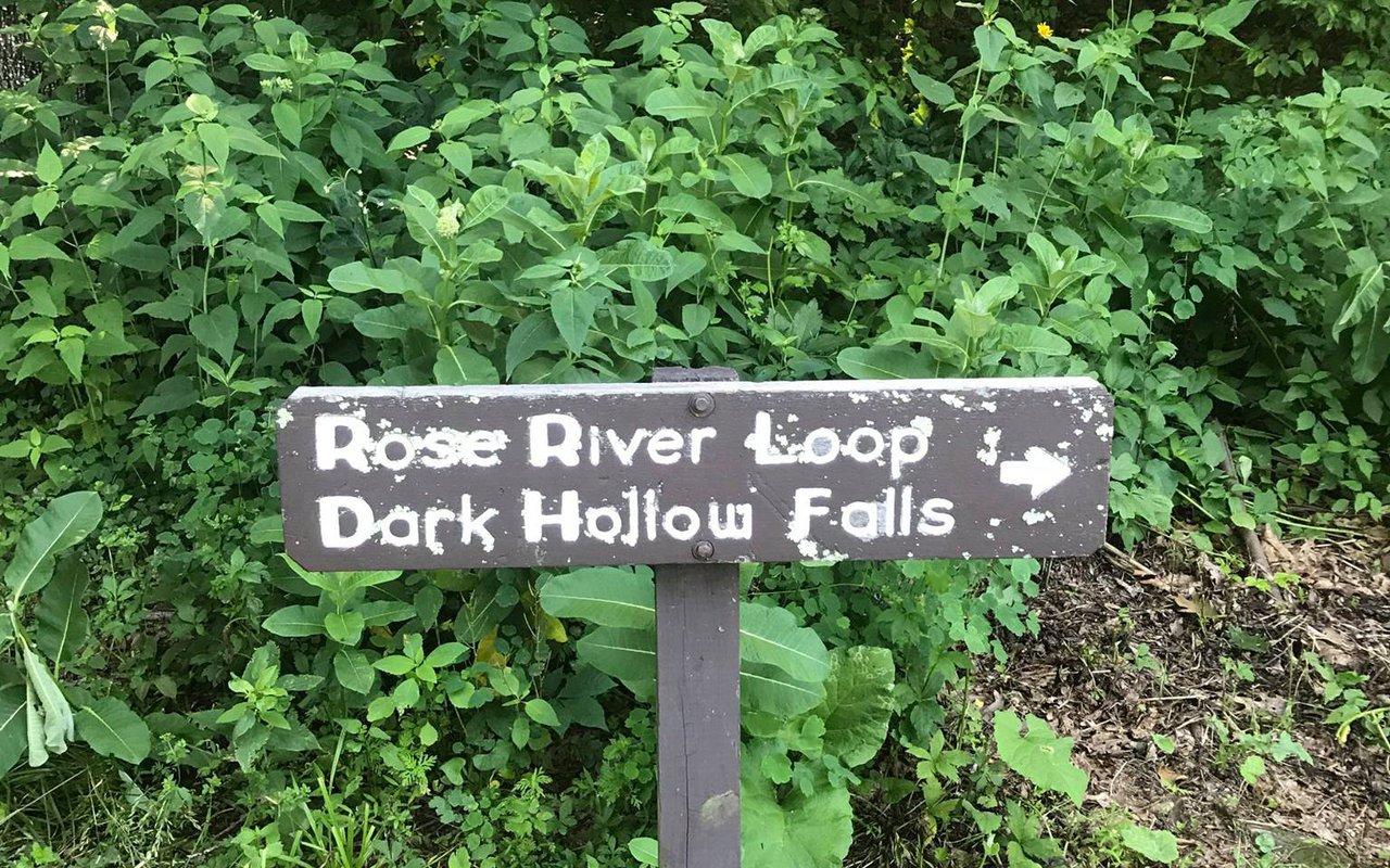 AWAYN IMAGE Hike in Rose River Trail