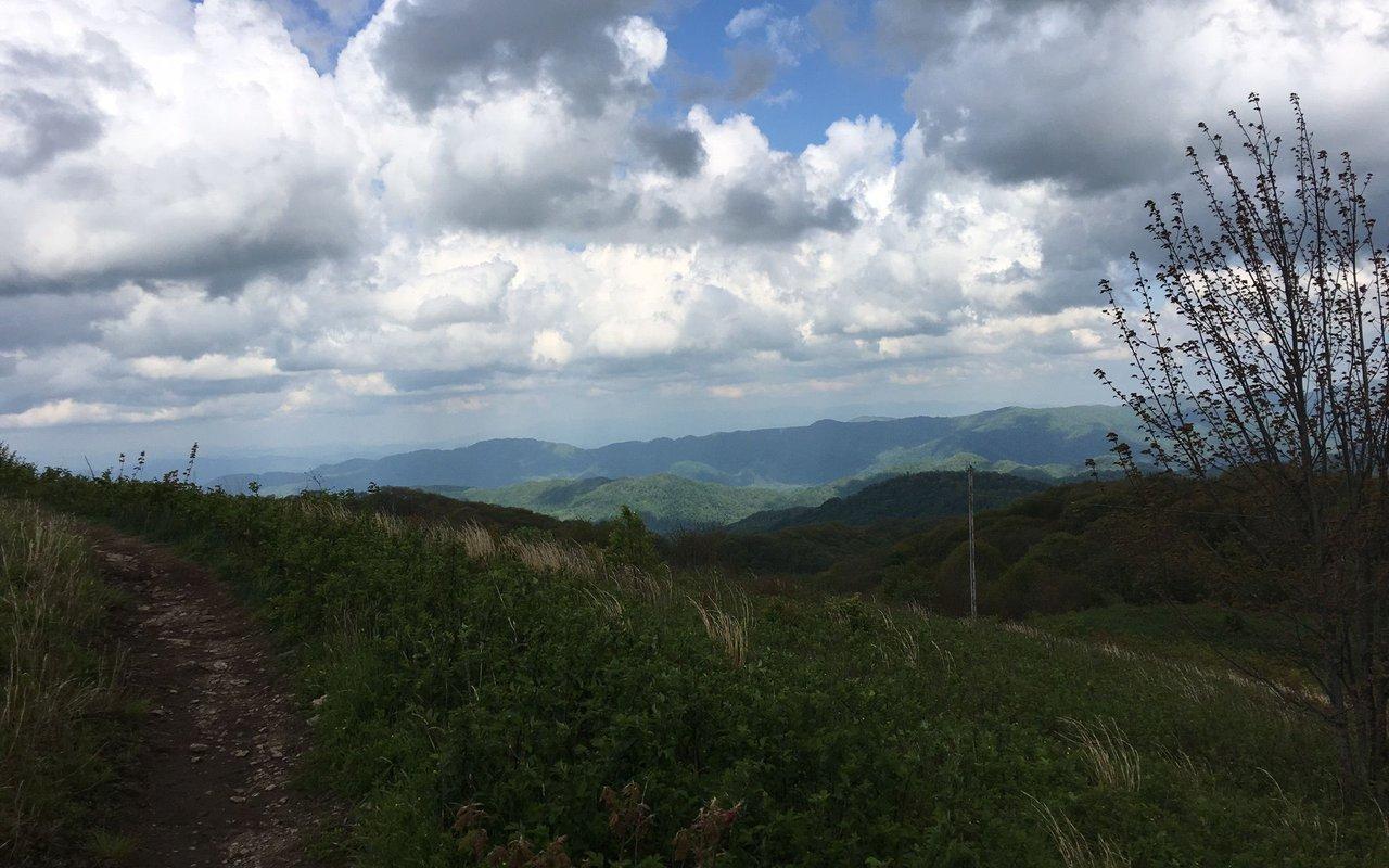AWAYN IMAGE Max Patch Trail Loop